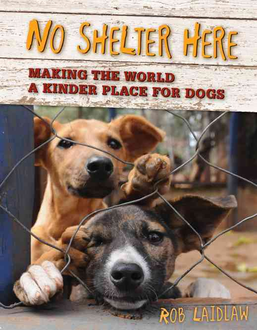 No Shelter Here By Laidlaw, Rob